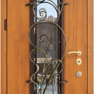 дверь металлическая 25 20